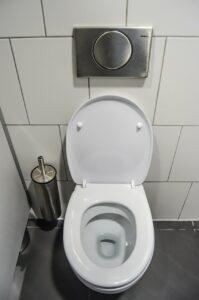 wc, toilet, purely-265278.jpg